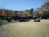 昼食は北の丸公園