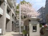 大妻講堂前の桜も満開です