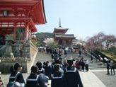 清水寺です