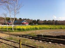 牧場風景.jpg